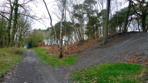 View looking down the old Engine Lane, in the direction of Lime Lane and towards the slag heap.