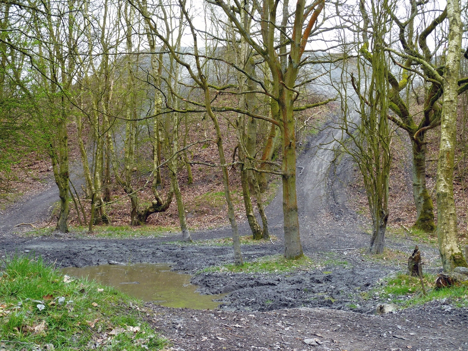 Side view of the slag heap. Notice the offroaders  tracks who have been using the site for their 4x4's.