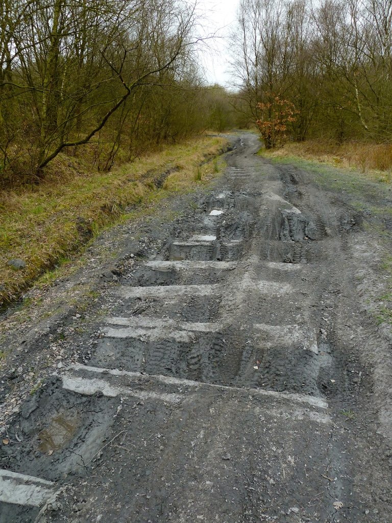 Tracks into the past! These old sleepers appear to be the original wooden sleepers that used to form the base of old mining railway track as shown on the OS Map below.